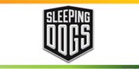 Δράση από Sleeping Dogs